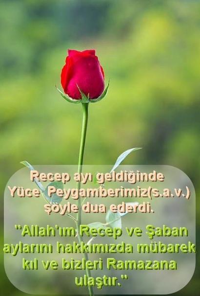 recep-e1398631429674