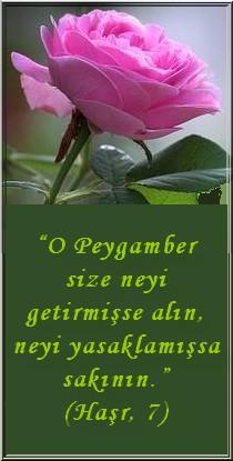 Peygamber(s.a.v.)